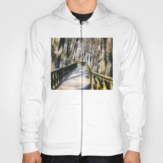 the bridge Hoody