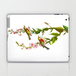 Chestnut Sided Warbler Bird Laptop & iPad Skin