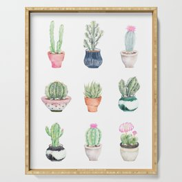 Succulents Serving Tray