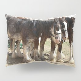 Clydesdale Team of Four Pillow Sham