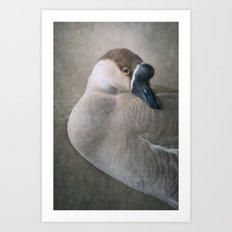 The Swan Goose Art Print