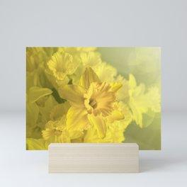 Narcissus Heaven  Mini Art Print