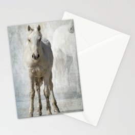 Traveler Portrait No 2 Stationery Cards
