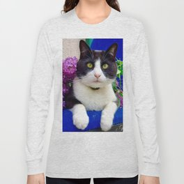Orazio charming cat in the blue Long Sleeve T-shirt