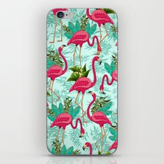 Pink Flamingos Exotic Birds iPhone & iPod Skin