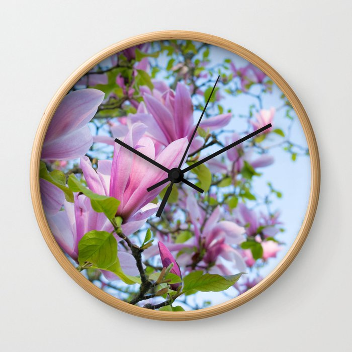 Magnolia trees in bloom  Wall Clock