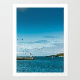 Vardø harbor Art Print