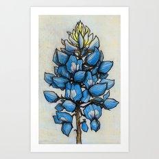 TEXAS BLUEBONNET Art Print