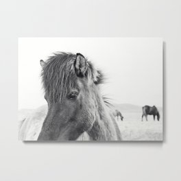 Horse Print | Modern and Black and White Metal Print