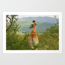 southafrica ... waiting for you Art Print