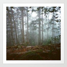 Dense Fog Art Print