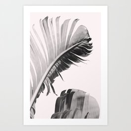 Pink Banana Leaf Art Print