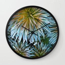 Star Plant Teal Wall Clock