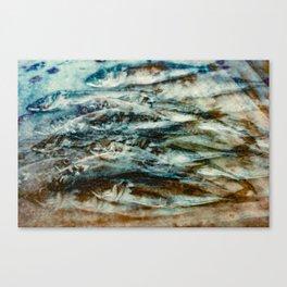 Sardines 3 Canvas Print