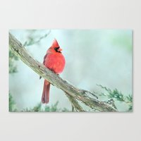 Canvas Prints featuring Elegant Cardinal by Nancy A Carter