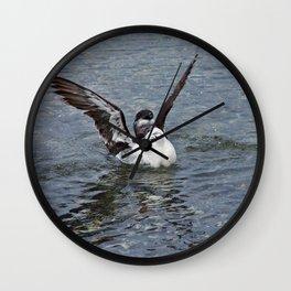 Razorbill spreading its wings Wall Clock