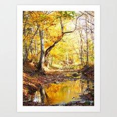 fall 2016 Art Print