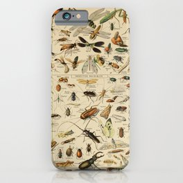 Adolphe Millot- Insecta iPhone Case