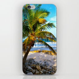 Mexican Palm iPhone Skin