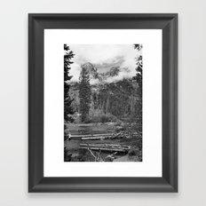 Birch Hallow, Teton Mountains Framed Art Print