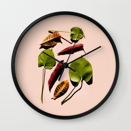 Different leaves laying over a pink background Wall Clock
