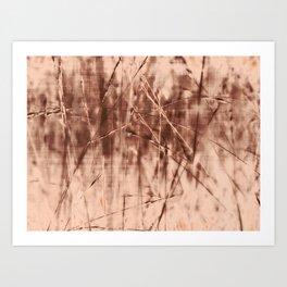 Golden grass ~ Abstract Art Print