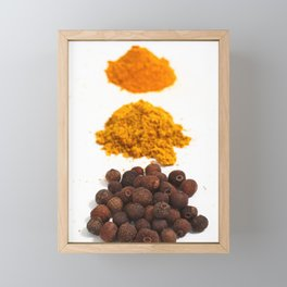 Spices Framed Mini Art Print