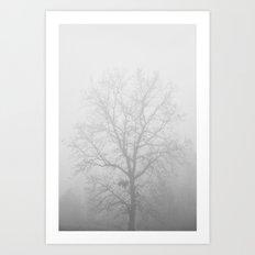 White Out - Hickory Tree Hidden in Dense Fog Art Print