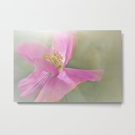 Fuchsia Pink Flower Metal Print