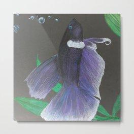 Pidgeon the Bettafish Metal Print