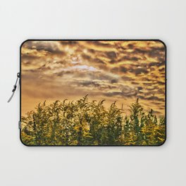 Approaching Laptop Sleeve