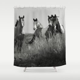 Cariboo Horses Shower Curtain