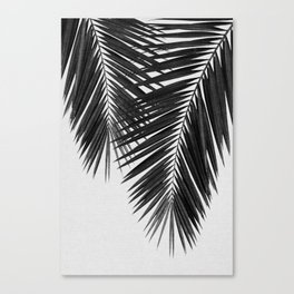 Palm Leaf Black & White II Canvas Print