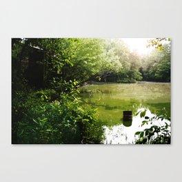 Black Bridge Swampland Canvas Print