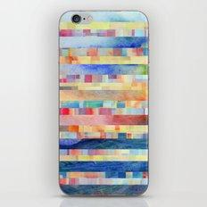Amalgamate (sp) iPhone & iPod Skin