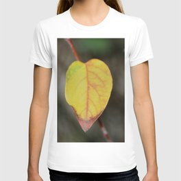 Red and Yelow Leaf T-shirt