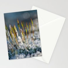 Frosted moss 36 Stationery Cards