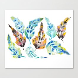Mix of Feathers  Canvas Print
