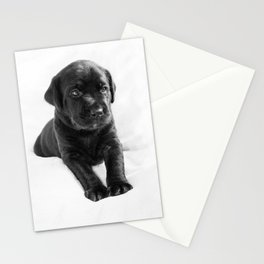 Black labrador puppy Stationery Cards