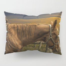 Saddle Horse on the Prairie Pillow Sham