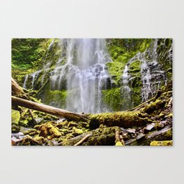 Proxy Falls Canvas Print
