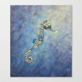 Sunlight Seahorse Canvas Print