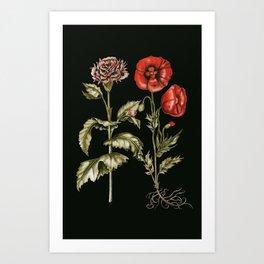 Carnation & Poppy on Charcoal Art Print