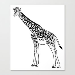Giraffe - ink illustration Canvas Print