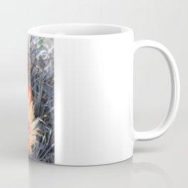 Barrel Cactus in Bloom, Yellow Flowers and Fruit Coffee Mug