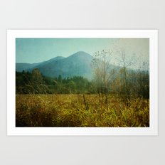 country drive Art Print