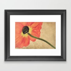 Lady Poppy Framed Art Print