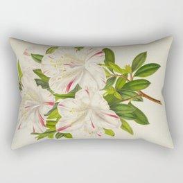 Azalea Madame Miellez Vintage Botanical Floral Flower Plant Scientific Rectangular Pillow
