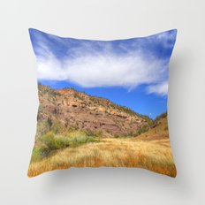 Gila River Valley Throw Pillow