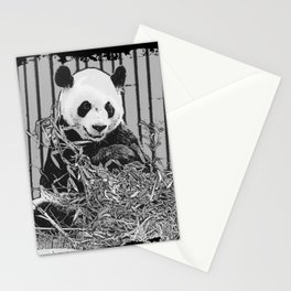 Panda Bear Cutie Stationery Cards